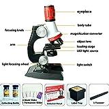 Mikroskop für Kinder,Jugendliche Forschen Entdecken Natur Wissenschaft Bildung Spielzeug,Beginner Microscope Kit 100X, 400x, and 1200x Magnification