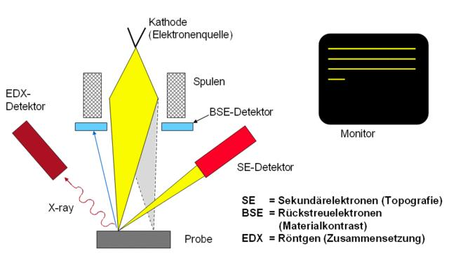 Funktionsprinzip REM-EDX (Rasterelektronenmikroskop - Energiedispersive Röntgenanalyse)