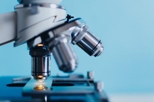 Mikroskop kaufen