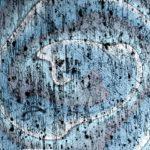 Fotografieren durch das Mikroskop - Körner Metalllegierung